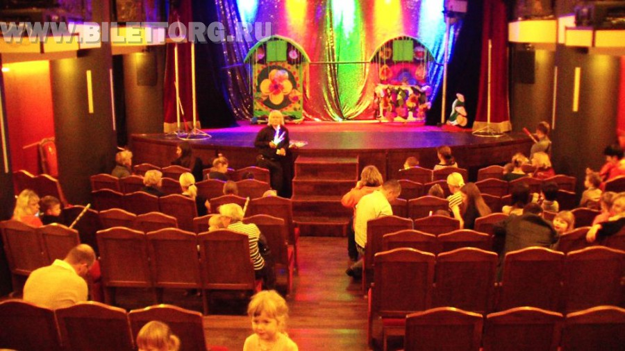 Зрительный зал Театра кошек