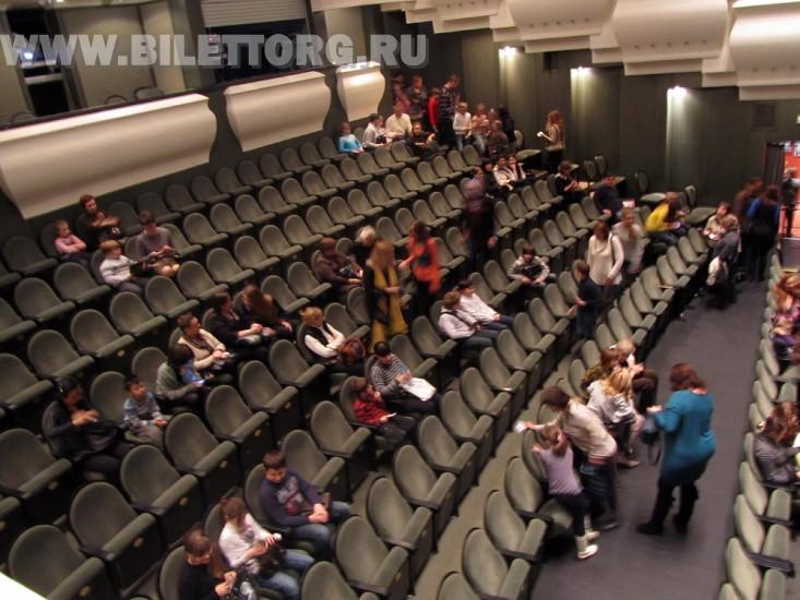 Зрительный зал новой сцены