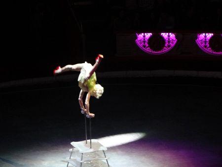 Эротика в цирке и на эстраде фото 634-221